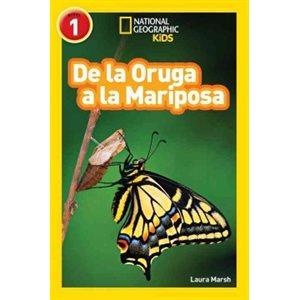 De la Oruga A la Mariposa (Caterpillar To Butterfly)