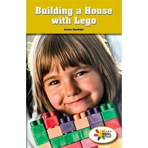 Building a House With Lego