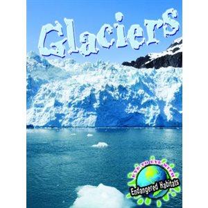 Glaciers (E2E)