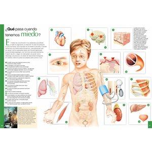 El abecé visual del cuerpo humano (The Visual Alphabet of the Human Body)