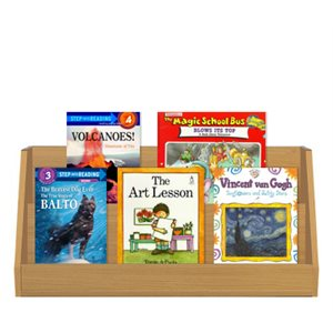 Grade 2 Fiction / Nonfiction Paired Studies Set (10 Bk Set)