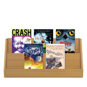 Grade 5 Fiction (10 Bk Set)