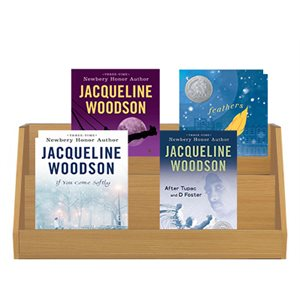Favorite Author Study - Jacqueline Woodson (4 Books)