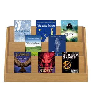 Fantasy (17 Books)
