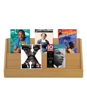 African American Biographies (5 Books)
