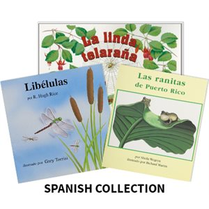 Reading Recovery Spanish Level 12 (10 bk set)