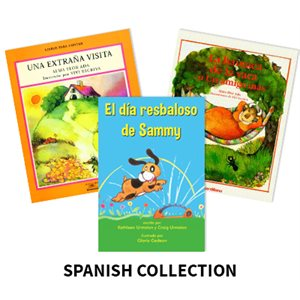 Reading Recovery Spanish Level 15 (5 bk set)