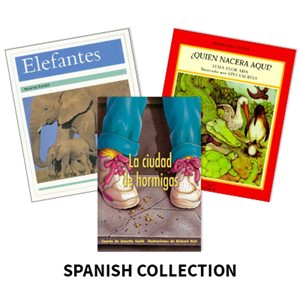 Reading Recovery Spanish Level 18 (5 bk set)