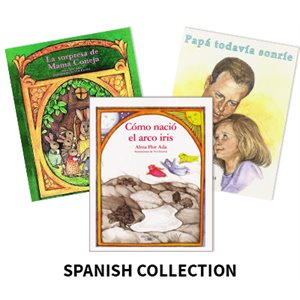 Reading Recovery Spanish Level 20 (6 bk set)