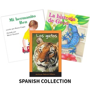 Reading Recovery Spanish Level 5  (25 bk set)