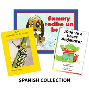 Reading Recovery Spanish Level 7 (25 bk set)