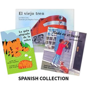 Reading Recovery Spanish Level 8 (15 bk set)