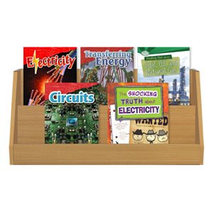 NGSS Grade 4- Energy (5 Books)