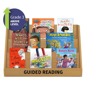 Guided Reading Collection: Grade 3 Above Level (20 Books)