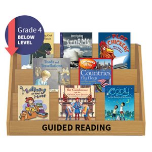 Guided Reading Collection: Grade 4 Below Level (20 Books)