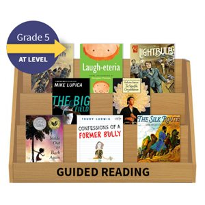 Guided Reading Collection: Grade 5 At Level (20 Books)