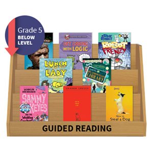 Guided Reading Collection: Grade 5 Below Level (20 Books)