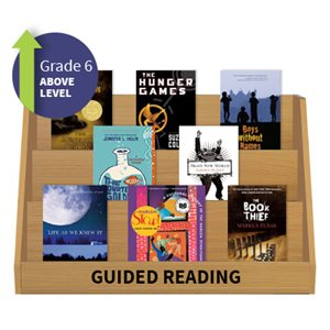 Guided Reading Collection: Grade 6 Above Level (20 Books)