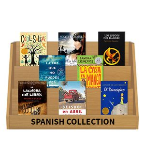 Grade 7 Bestsellers (15 books) Spanish