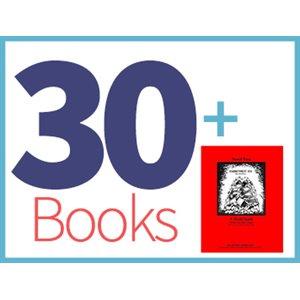 Fahrenheit 451 Class Set (30 books, 1 Novel-Tie) (BMI)