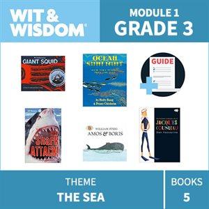 Wit & Wisdom Module 1 Books--Grade 3
